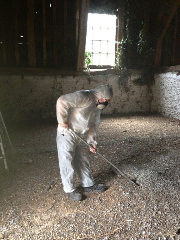 how to clean pigeon droppings