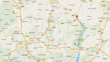 Pest control Hertfordshire